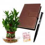 Leahter Luck - 3 Layer Lucky Bamboo Plant, Leather Diary, Parker Beta Premium Ball Pan & Card
