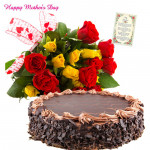 Yellow Choco Gift - 15 Yellow and Red Roses Bunch, 1/2 Kg Chocolate Cake and Card