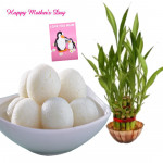 Lucky Sweet - 3 Layer Lucky Bamboo Plant, Rasgulla 500 gms and Card