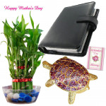 Lucky Diary with Turtle - 2 Layer Lucky Bamboo Plant, Leather Diary, Bejeweled Turtle and Card