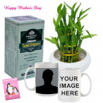 Tea Time - 2 Layer Lucky Bamboo Plant, Tulsi Original Antioxidant Rich Tea, Personlized Mug and Card