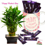 Lucky Mug with Teddy - 1 Layer Lucky Bamboo Plant, Mother's Day Mug, 10 Dairy Milk and Card