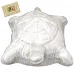 Silver Tortoise (25 Grams)