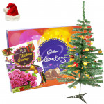 Sweet Xmas - Cadbury Celebrations, Christmas Tree with Santa Cap and Greeting Card