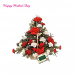 Refreshing Basket - 20 Red & White Carnations Basket and Mother's Day Greeting Card