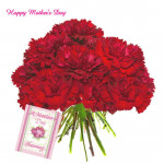 Vibrant Carnations - 12 Red Carnations Bouquet and Mother's Day Greeting Card