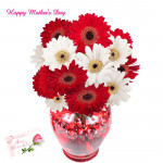 Dual Tone Vase - 24 Red & White Gerberas in Vase and card