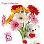 "Multicolor Combo - 12 Multicolored Gerberas Bouquet, Teddy 6"" and card"