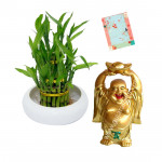 Lucky Year - Good Luck Plant, Small Laughing Buddha & Card
