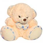 Delightful Teddy (7 Inch)