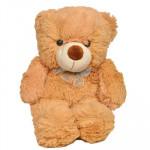 Cutest Teddy (12 Inch)