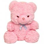 Pink Soft Teddy (12 Inch)