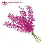 Passion of Purple - 8 Purple Orchids Bouquet + Card