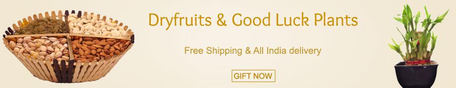 Dryfruits & Good Luck Plants